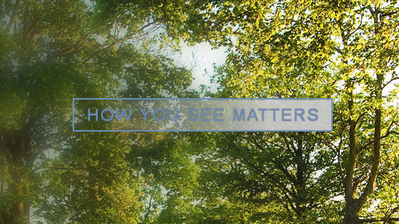 HOW YOU SEE MATTERS